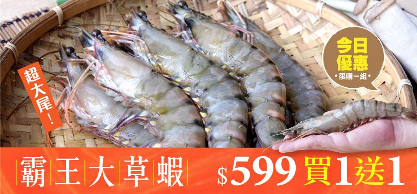 霸王大草蝦20公分(8入)